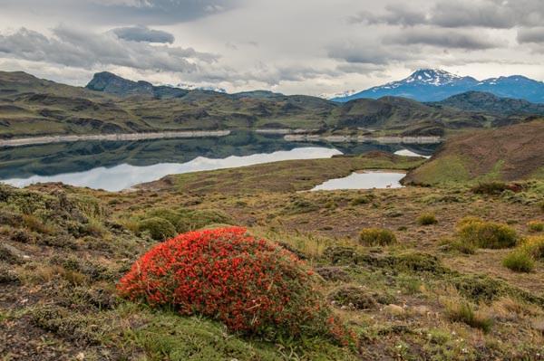 landscape photography technique